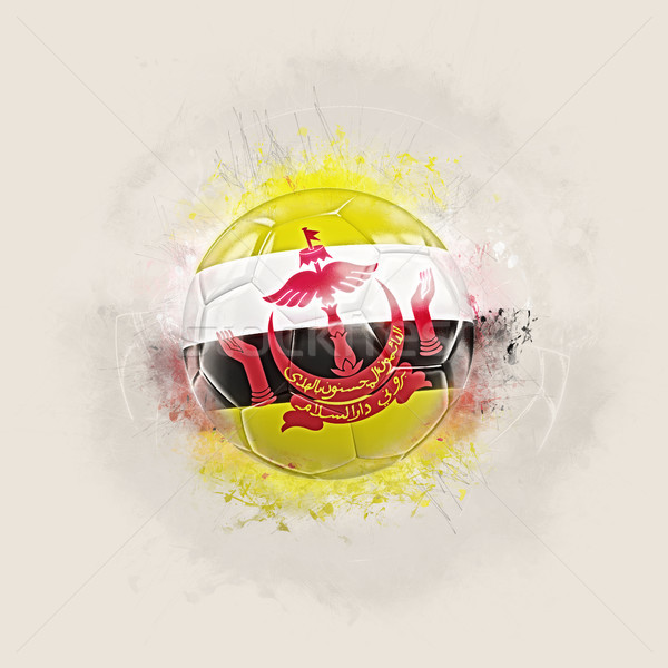 Grunge voetbal vlag Brunei 3d illustration wereld Stockfoto © MikhailMishchenko