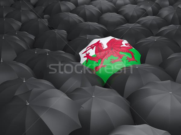 şemsiye bayrak galler siyah yağmur Stok fotoğraf © MikhailMishchenko