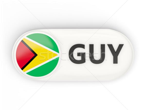 Ikon zászló Guyana iso kód vidék Stock fotó © MikhailMishchenko