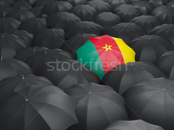 Guarda-chuva bandeira Camarões preto guarda-chuvas chuva Foto stock © MikhailMishchenko