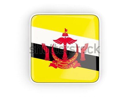 квадратный наклейку флаг Бруней изолированный белый Сток-фото © MikhailMishchenko