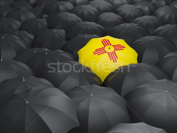 Stock photo: new mexico state flag on umbrella. United states local flags