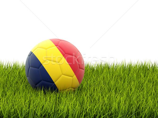 Fútbol bandera Chad hierba verde fútbol mundo Foto stock © MikhailMishchenko
