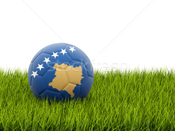 Futebol bandeira Kosovo grama verde futebol mundo Foto stock © MikhailMishchenko