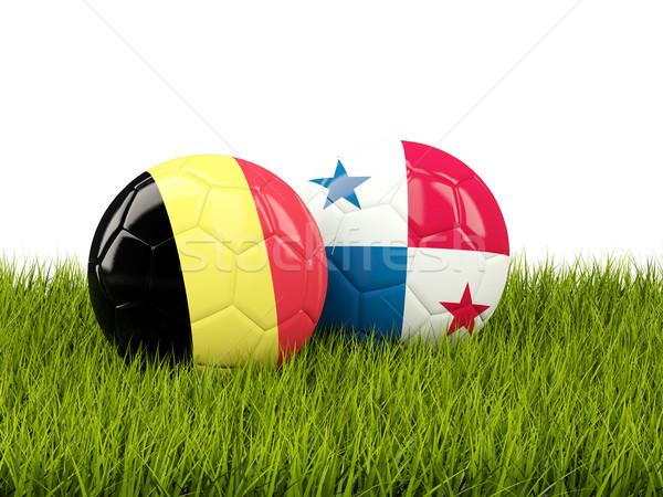België vs Panama voetbal vlaggen groene Stockfoto © MikhailMishchenko