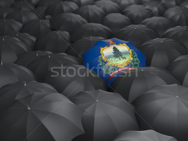Vermont bayrak şemsiye Amerika Birleşik Devletleri yerel bayraklar Stok fotoğraf © MikhailMishchenko