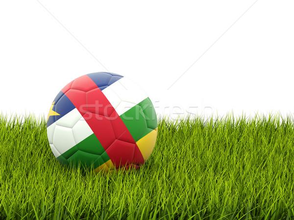 футбола флаг центральный африканских республика зеленая трава Сток-фото © MikhailMishchenko