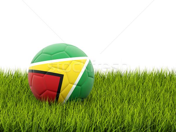 Voetbal vlag Guyana groen gras voetbal wereld Stockfoto © MikhailMishchenko
