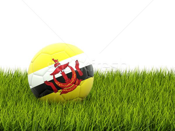 Voetbal vlag Brunei groen gras voetbal wereld Stockfoto © MikhailMishchenko