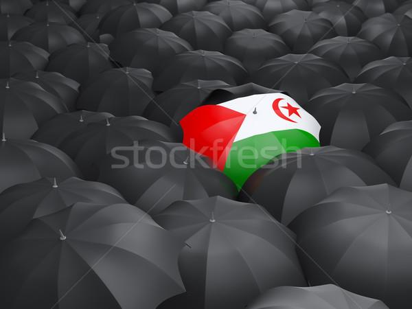 Paraguas bandera occidental sáhara negro paraguas Foto stock © MikhailMishchenko
