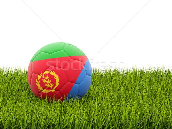 Piłka nożna banderą Erytrea zielona trawa piłka nożna dziedzinie Zdjęcia stock © MikhailMishchenko