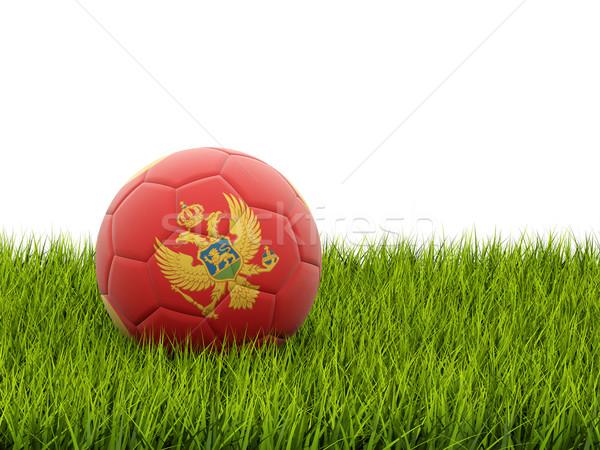 サッカー フラグ モンテネグロ 緑の草 サッカー フィールド ストックフォト © MikhailMishchenko