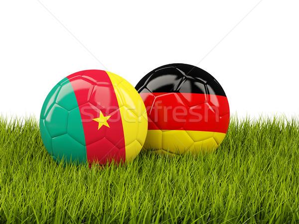 два флагами зеленая трава 3d иллюстрации Футбол зеленый Сток-фото © MikhailMishchenko