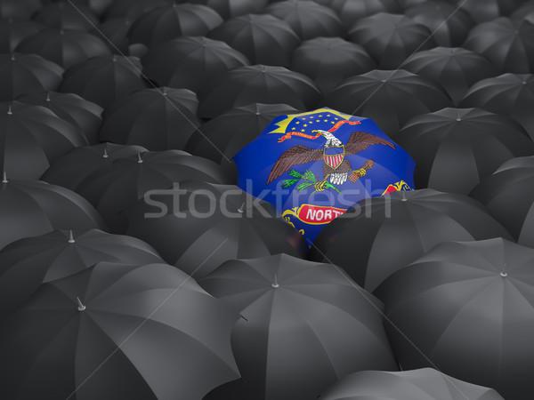 Dakota del Nord bandiera ombrello Stati Uniti locale bandiere Foto d'archivio © MikhailMishchenko