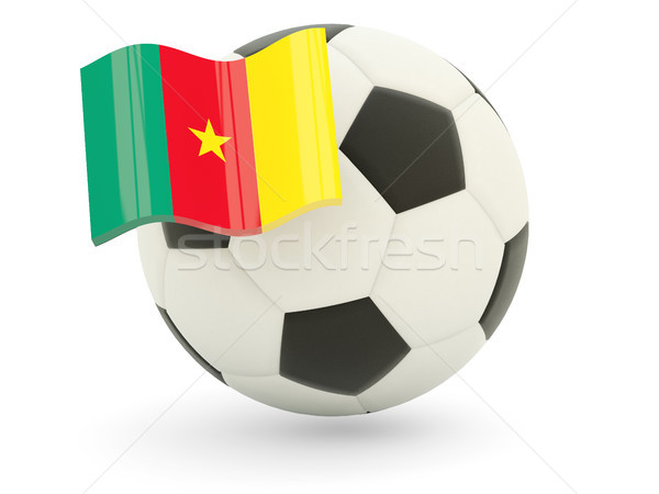 футбола флаг Камерун изолированный белый спорт Сток-фото © MikhailMishchenko