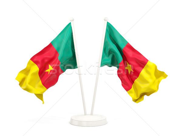 Dwa flagi Kamerun odizolowany biały Zdjęcia stock © MikhailMishchenko