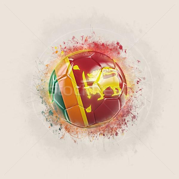 Grunge futball zászló Sri Lanka 3d illusztráció világ Stock fotó © MikhailMishchenko