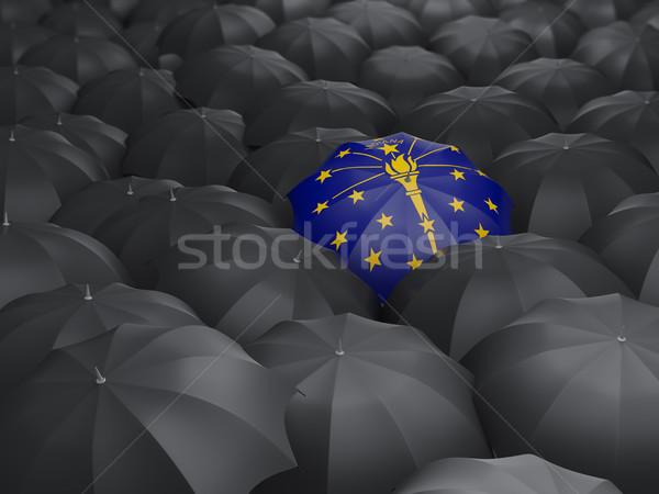 Indiana zászló esernyő Egyesült Államok helyi zászlók Stock fotó © MikhailMishchenko