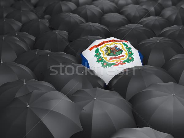 Западная Виргиния флаг зонтик Соединенные Штаты местный флагами Сток-фото © MikhailMishchenko