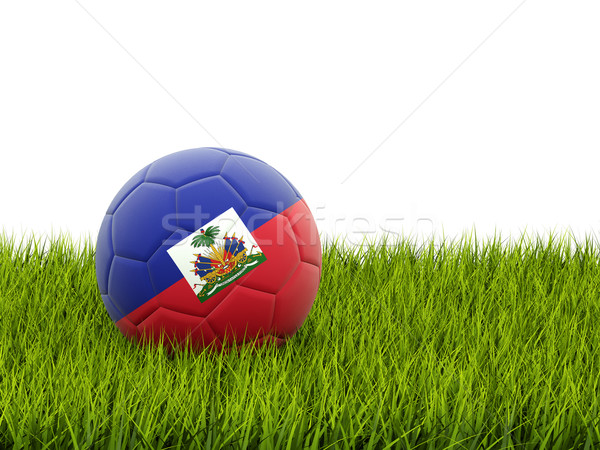 サッカー フラグ ハイチ 緑の草 サッカー 世界 ストックフォト © MikhailMishchenko