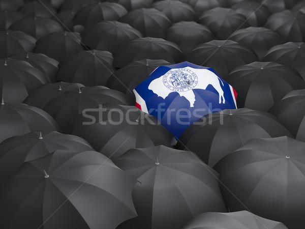 Wyoming bandeira guarda-chuva Estados Unidos local bandeiras Foto stock © MikhailMishchenko