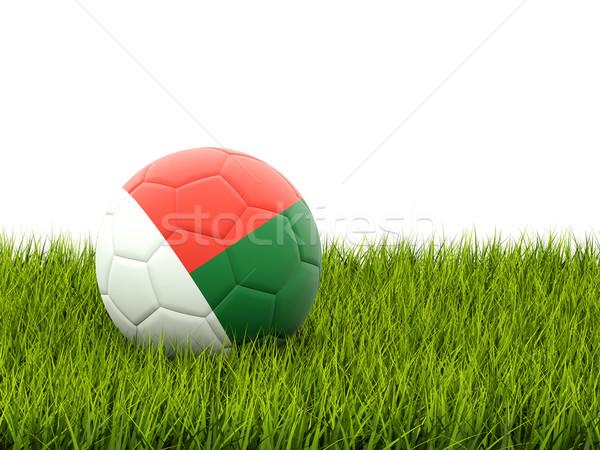 サッカー フラグ マダガスカル 緑の草 サッカー フィールド ストックフォト © MikhailMishchenko
