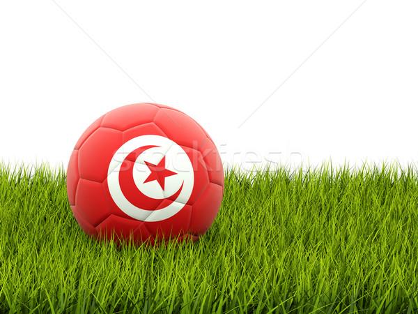 サッカー フラグ チュニジア 緑の草 サッカー フィールド ストックフォト © MikhailMishchenko