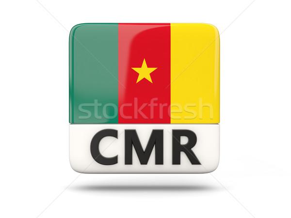 квадратный икона флаг Камерун iso Код Сток-фото © MikhailMishchenko
