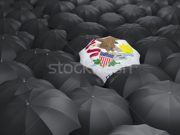 illinois state flag on umbrella. United states local flags Stock photo © MikhailMishchenko