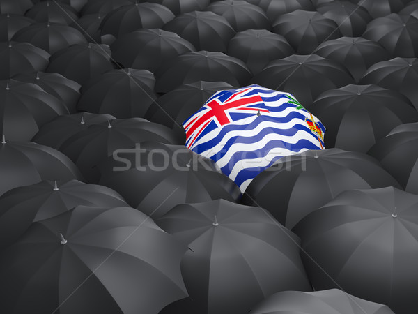 Stock photo: Umbrella with flag of british indian ocean territory