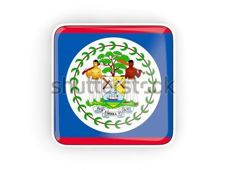 Tér ikon zászló Belize fém keret Stock fotó © MikhailMishchenko