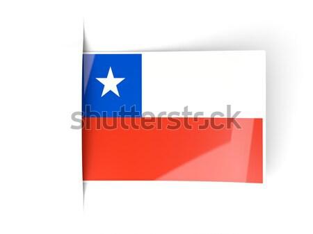 Teksas bayrak kare etiket gölge Amerika Birleşik Devletleri Stok fotoğraf © MikhailMishchenko