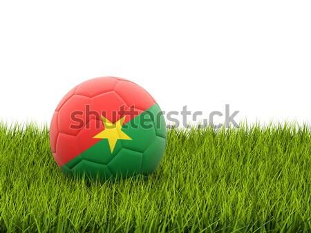 サッカー フラグ セネガル 緑の草 サッカー フィールド ストックフォト © MikhailMishchenko