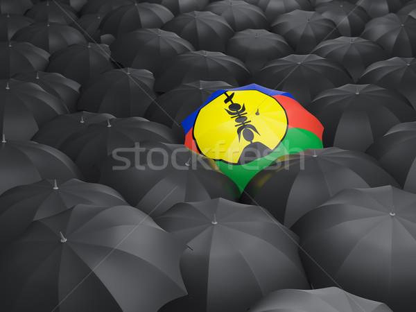 Umbrella with flag of new caledonia Stock photo © MikhailMishchenko