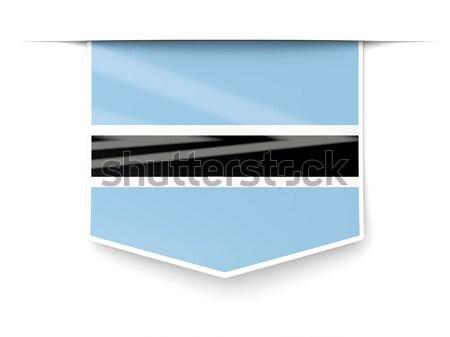 квадратный Label флаг Эстония изолированный белый Сток-фото © MikhailMishchenko