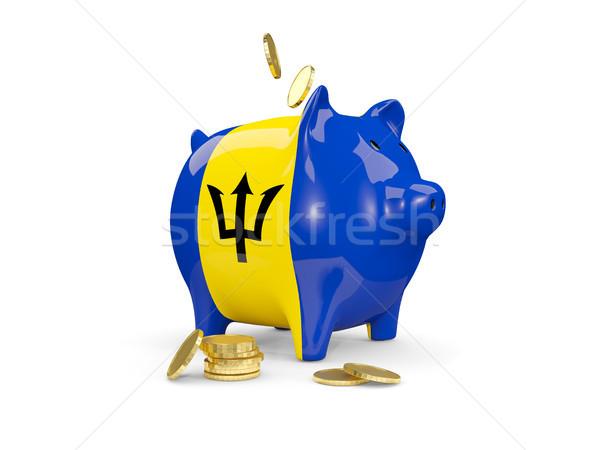 Vet spaarvarken Barbados geld geïsoleerd witte Stockfoto © MikhailMishchenko