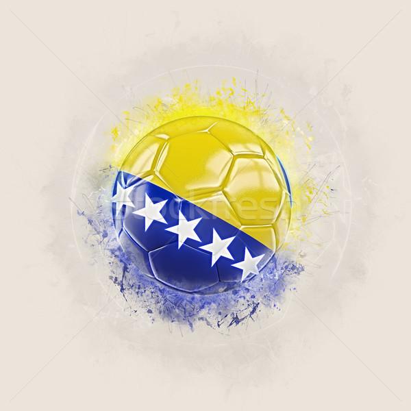 Grunge fútbol bandera Bosnia Herzegovina 3d mundo Foto stock © MikhailMishchenko