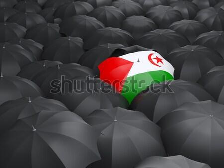 Califórnia bandeira guarda-chuva Estados Unidos local bandeiras Foto stock © MikhailMishchenko