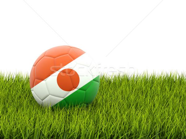 Fútbol bandera Níger hierba verde fútbol mundo Foto stock © MikhailMishchenko