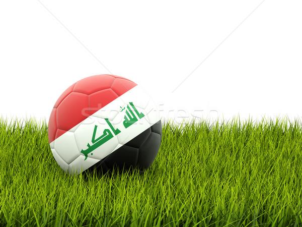 Futbol bayrak Irak yeşil ot futbol dünya Stok fotoğraf © MikhailMishchenko