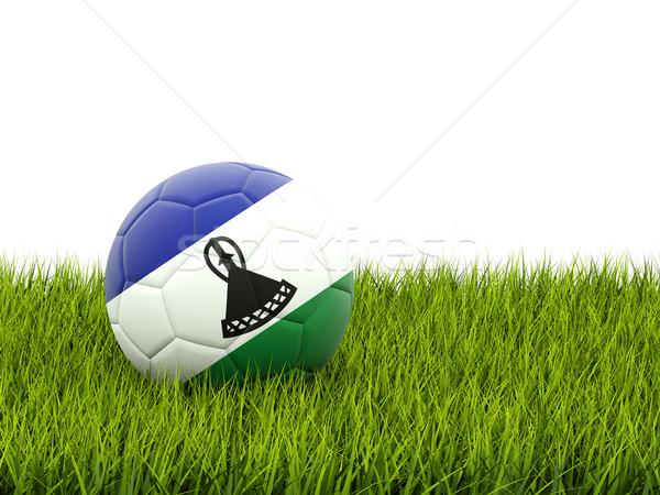 Football pavillon Lesotho herbe verte football domaine Photo stock © MikhailMishchenko