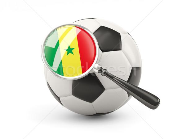 Futball nagyított zászló Szenegál izolált fehér Stock fotó © MikhailMishchenko