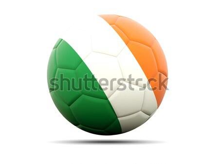 Calcio bandiera Irlanda illustrazione 3d calcio sport Foto d'archivio © MikhailMishchenko