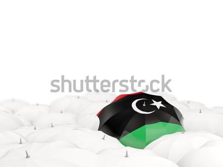 зонтик флаг Нигер черный путешествия Сток-фото © MikhailMishchenko