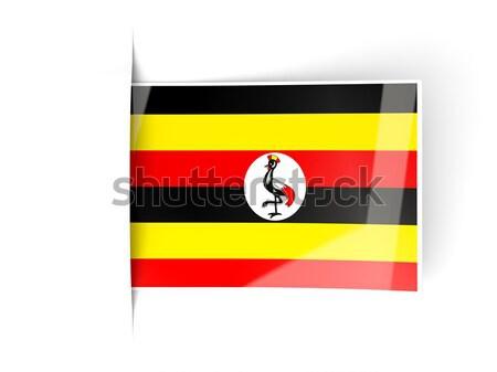 Tér fém gomb zászló Uganda izolált Stock fotó © MikhailMishchenko