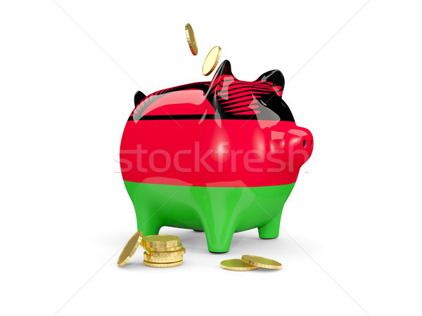 Fat piggy bank with fag of malawi Stock photo © MikhailMishchenko
