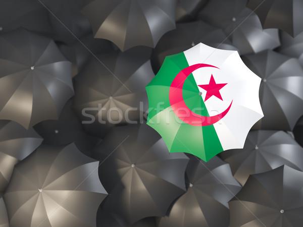 Guarda-chuva bandeira Argélia topo preto guarda-chuvas Foto stock © MikhailMishchenko