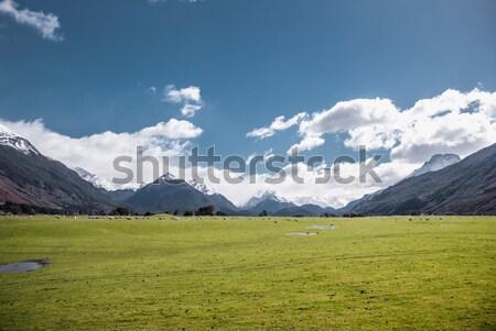 高山 風景 公園 ハイキング 新しい ニュージーランド ストックフォト © MikhailMishchenko