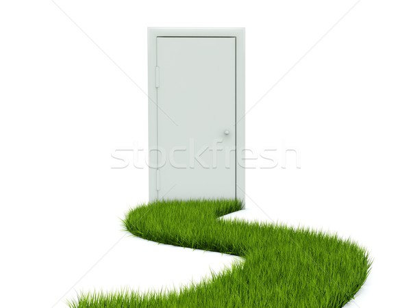 Stock photo: Door with grass path