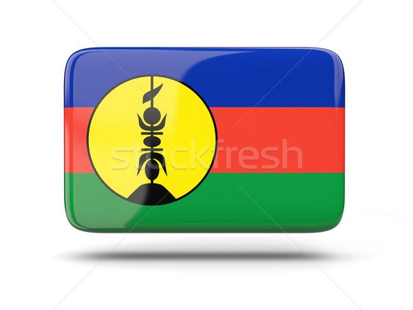 Square icon with flag of new caledonia Stock photo © MikhailMishchenko